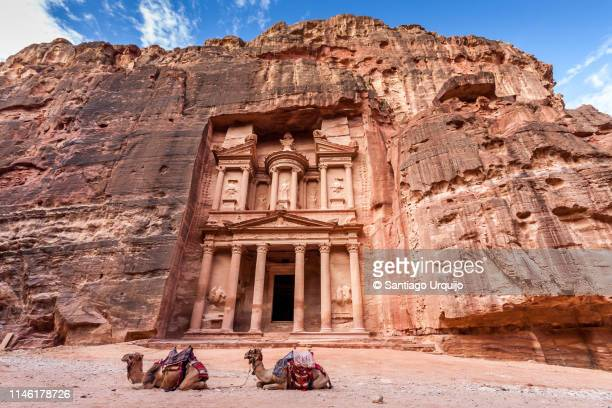 camels resting in front of al khazneh (the treasury) in petra - 遺跡 ストックフォトと画像