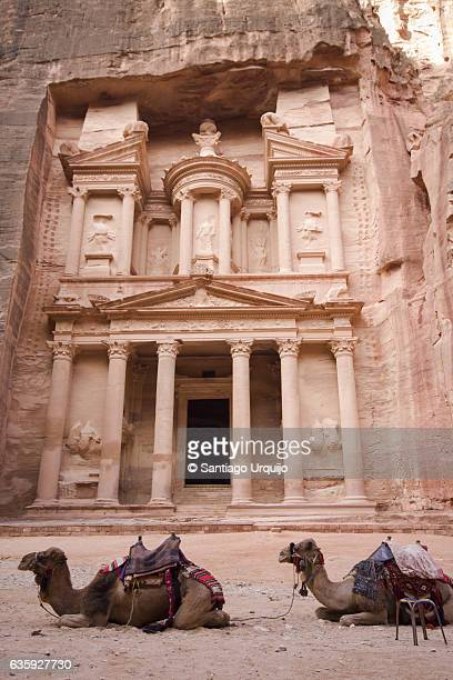 Camels resting in front of Al Khazneh (The Treasury) in Petra
