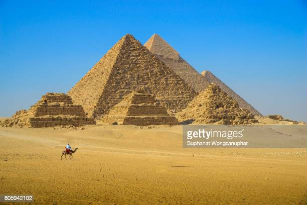 camels with pyramids at giza - the sphinx stock pictures, royalty-free photos & images
