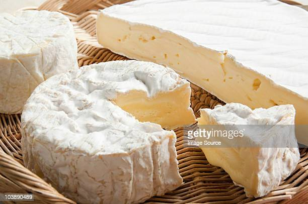 camembert and brie cheeses - camembert stock photos and pictures