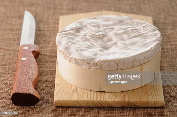 Camembert cheese and knife