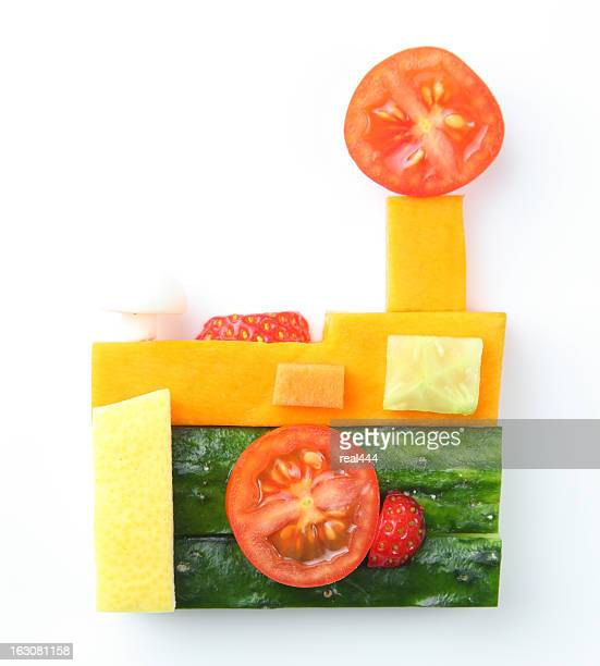 camera  in vegetable and fruit style