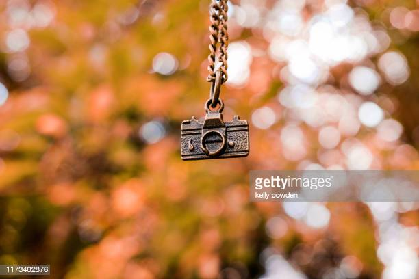 camera photography bokeh autumn fall outdoors nature - kelly bowden stock pictures, royalty-free photos & images