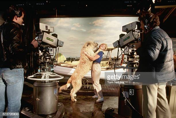 cameras filming huge dog and actress - television show stock pictures, royalty-free photos & images
