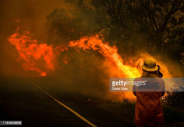 A camerman films flames crossing a road as a bushfire burns near homes on the outskirts of the town of Bilpin on December 19 2019 in Sydney Australia...
