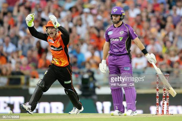 Cameron Bancroft celebrates after Ashton Agar of the Scorchers takes the wicket of Dan Christian of the Hurricanes during the Big Bash League match...