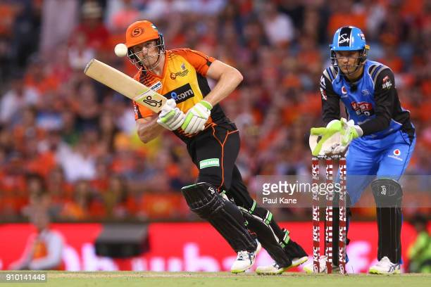 Cameron Bancroft of the Scorchers bats during the Big Bash League match between the Perth Scorchers and the Adelaide Strikers at WACA on January 25...