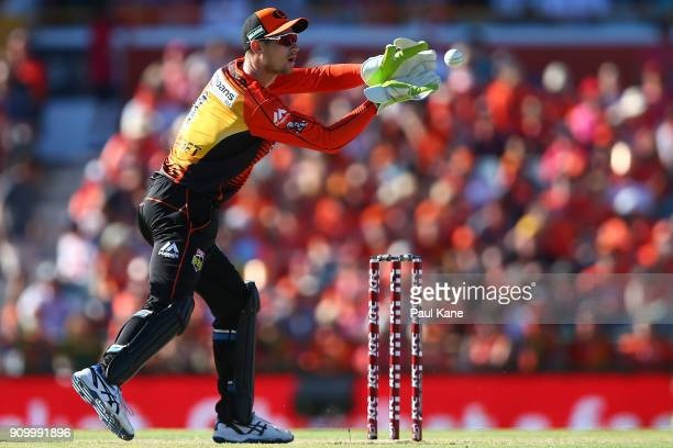 Cameron Bancroft of the Scorchers takes a return throw during the Big Bash League match between the Perth Scorchers and the Adelaide Strikers at WACA...