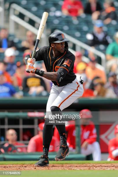 Cameron Maybin of the San Francisco Giants bats during a Spring Training game against the Cincinnati Reds on Tuesday February 26 2019 at Goodyear...