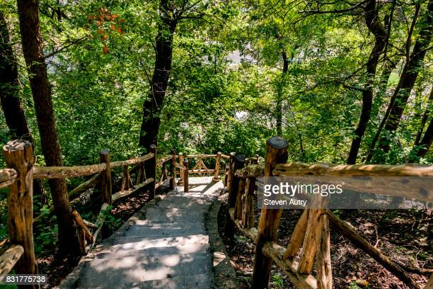 "waco, texas, usa - aug 4, 2017:  cameron park ""jacob's ladder"" climbing staircase as seen from the top of the ladder. - waco stock pictures, royalty-free photos & images"