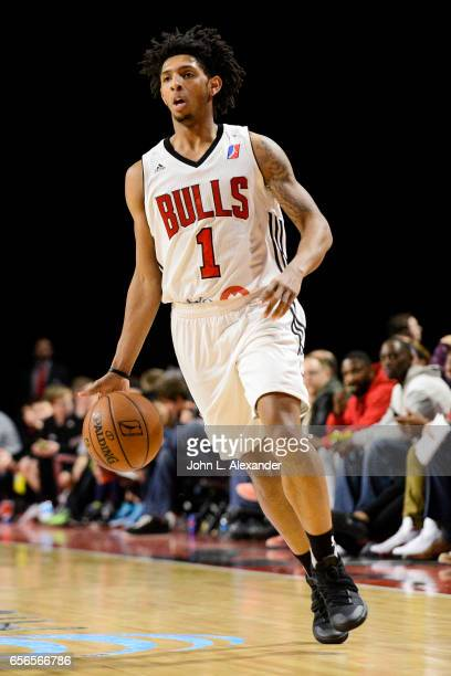 Cameron Payne of the Windy City Bulls brings the ball down court against the Westchester Knicks on March 21 2017 at the Sears Centre Arena in Hoffman...