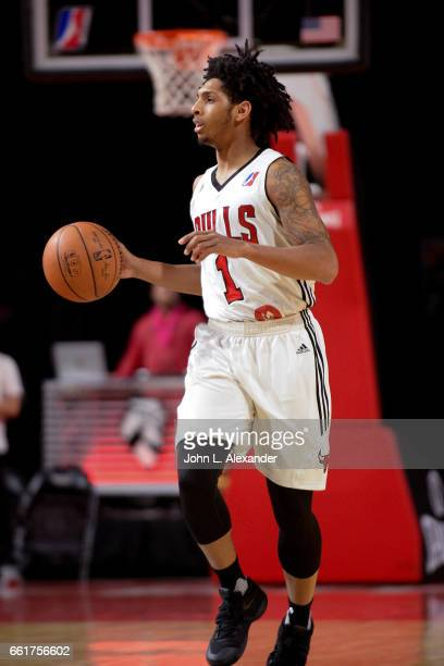 Cameron Payne of the Windy City Bulls dribbles the ball up court against the Erie Bayhawks on March 28 2017 at the Sears Centre Arena in Hoffman...