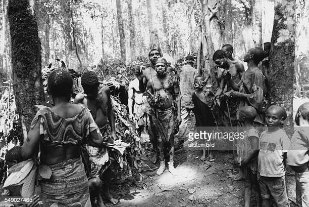 Baka pygmies in the rain forest Here Healer assembling for healing ceremony