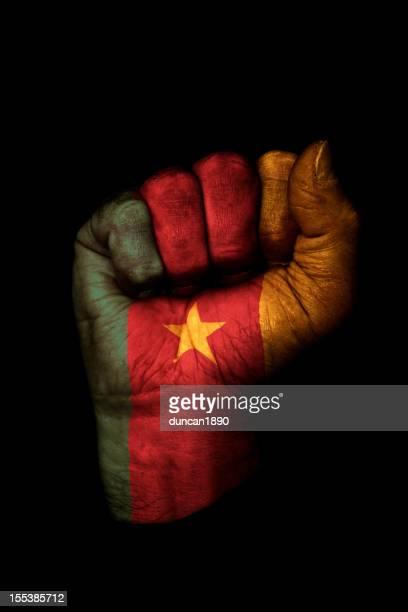 Kamerunische Flagge Faust