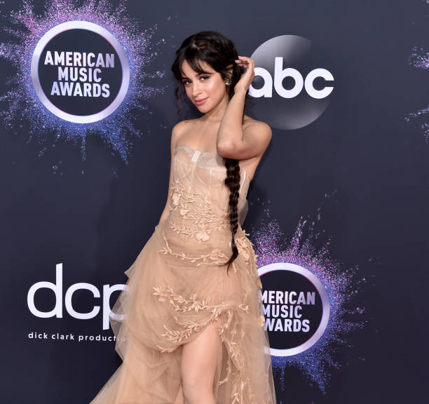CA: 2019 American Music Awards - Arrivals