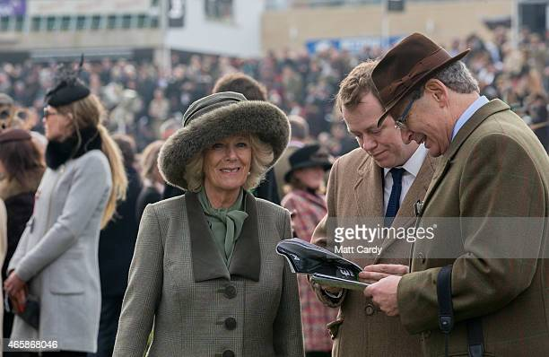 Camilla Duchess of Cornwall and her son Tom Parker Bowles look at horses in the paddock with Cheltenham Racecourse Chairman Robert Waley Cohen on the...