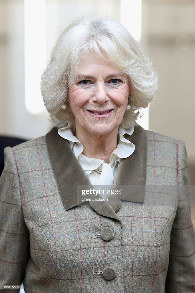 Camilla, Duchess Of Cornwall and Patron of St. John's Hospital, visits the charity's almshouses and officially opens the newly refurbished Rosenberg House during a visit to Bath on January 31, 2017 in Bath, England. Her Royal Highness will meet local organisations supported by St John's as well as community groups who use the facilities, including members of the 'Silver Swans' dance class and attend a reception for residents and supporters.