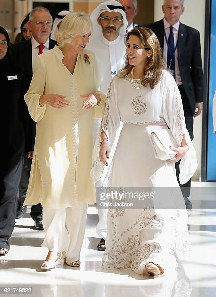 Camilla Duchess of Cornwall and Princess Haya Bint Al Hussein on day 3 of a Royal tour of the United Arab Emirates at Al Jalila Children's Speciality...