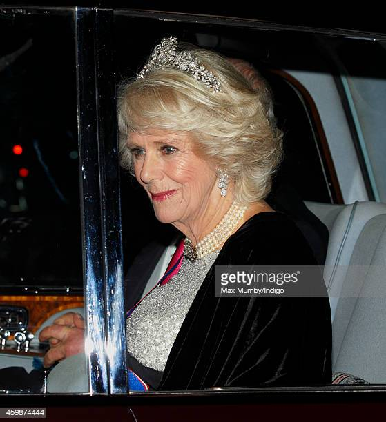 Camilla, Duchess of Cornwall arrives at Buckingham Palace to attend a reception hosted by Queen Elizabeth II for Members of the Diplomatic Corps on...
