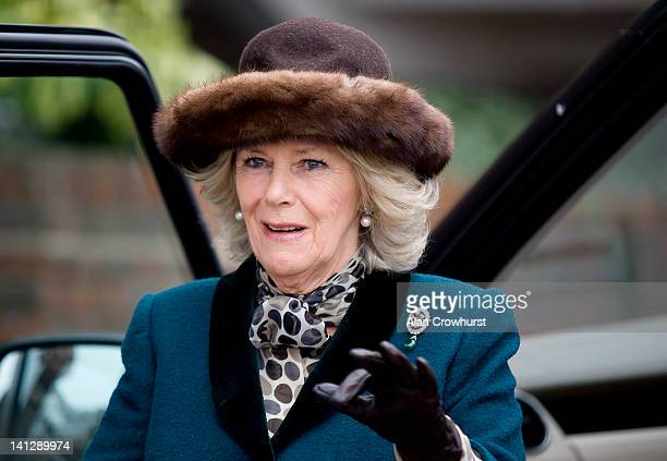 Camilla Duchess of Cornwall arrives at Cheltenham racecourse on ladies day during day two of the Cheltenham Festival on March 14 2012 in Cheltenham...