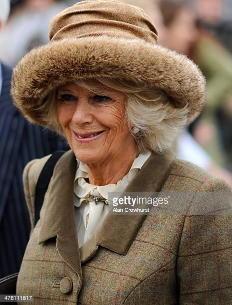 Camilla Duchess of Cornwall arrives at Cheltenham racecourse on March 12 2014 in Cheltenham England
