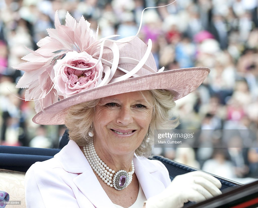 Horse Racing - The Royal Ascot Meeting 2009 - Day Two - Ascot Racecourse : News Photo
