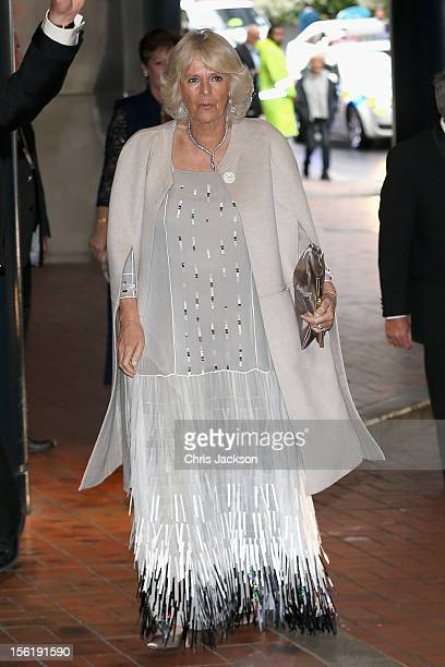 Camilla Duchess of Cornwall attends a Diamond Jubilee Trust reception and dinner at the SkyCity Convention Centre on November 12 2012 in Auckland New...