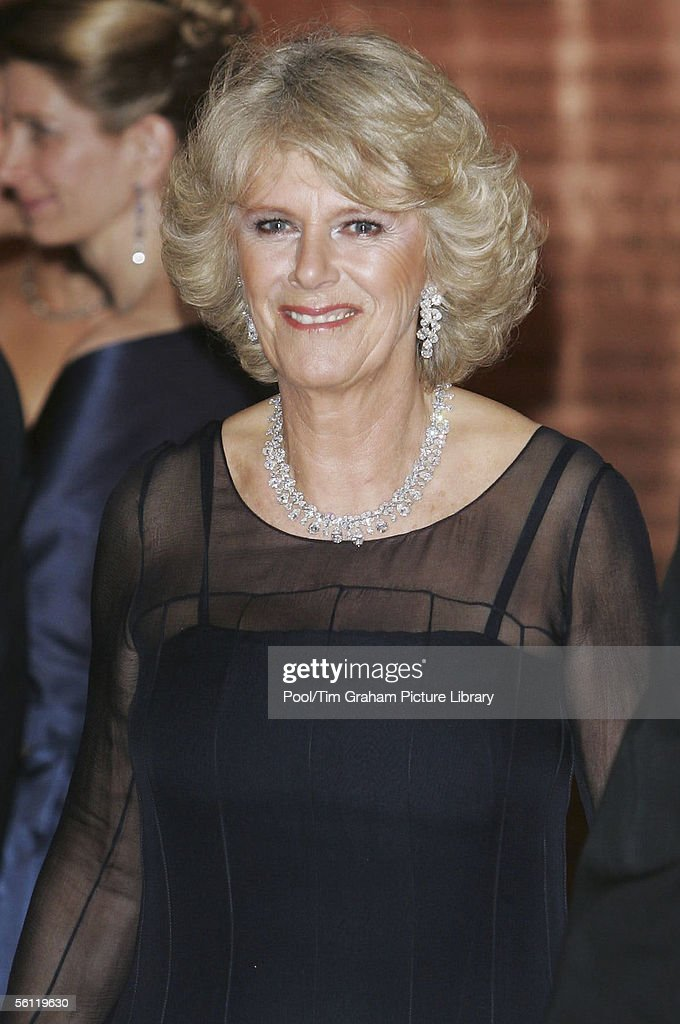 Prince Of Wales & Duchess Of Cornwall US Visit - Day 7 : News Photo