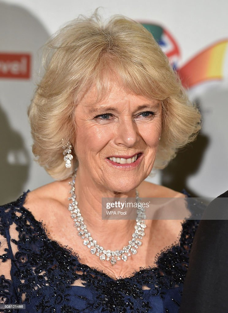The Prince of Wales and Duchess of Cornwall Attend a Reception and Dinner for Supporters of The British Asian Trust - Dinner Speeches : News Photo