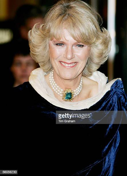 Camilla Duchess of Cornwall attends a reception at the Museum of Modern Art on November 1 2005 in New York City the first day of her eightday visit...