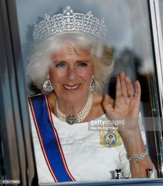 Camilla, Duchess of Cornwall attends a State Banquet at Buckingham Palace on day 1 of the Spanish State Visit on July 12, 2017 in London, England....