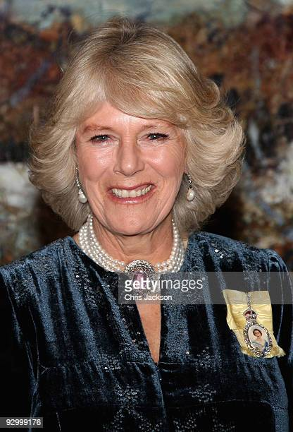 Camilla, Duchess of Cornwall attends a State Dinner at the Governor General's Residence on November 11, 2009 in Ottawa, Ontario, Canada. The Royal...