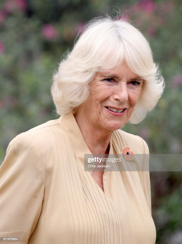 Camilla, Duchess of Cornwall attends an Elephant Family charity event during a visit to India on November 8, 2017 in New Delhi, India. The Prince of Wales and Duchess of Cornwall are on a tour of Singapore, Malaysia, Brunei and India.