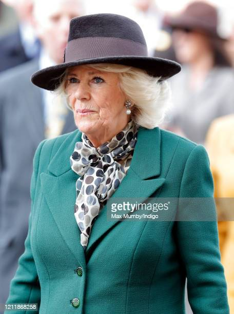 Camilla Duchess of Cornwall attends day 2 'Ladies Day' of the Cheltenham Festival 2020 at Cheltenham Racecourse on March 11 2020 in Cheltenham England