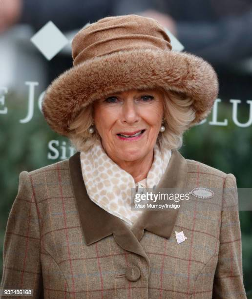 Camilla Duchess of Cornwall attends day 2 'Ladies Day' of the Cheltenham Festival at Cheltenham Racecourse on March 14 2018 in Cheltenham England...