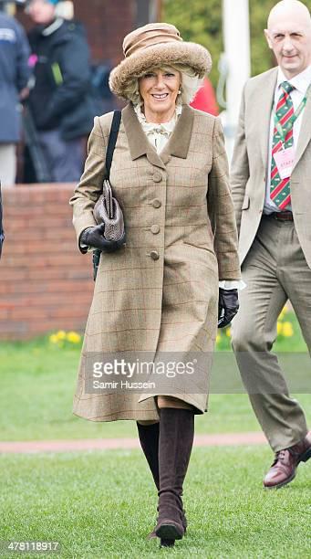 Camilla Duchess of Cornwall attends day 2 of The Cheltenham Festival at Cheltenham Racecourse on March 12 2014 in Cheltenham England