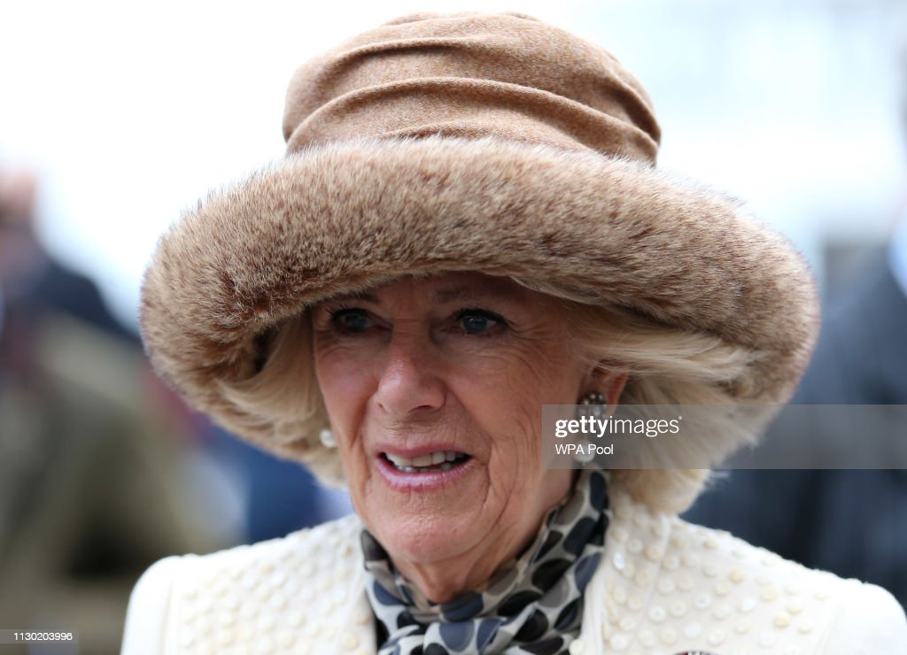 GBR: The Duchess Of Cornwall Attends The Cheltenham Festival
