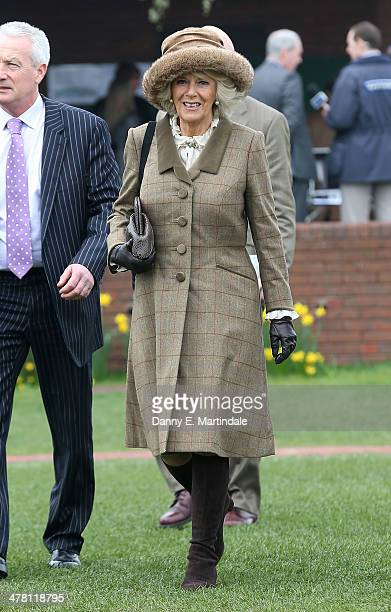 Camilla Duchess of Cornwall attends Ladies Day day 2 of The Cheltenham Festival at Cheltenham Racecourse on March 12 2014 in Cheltenham England