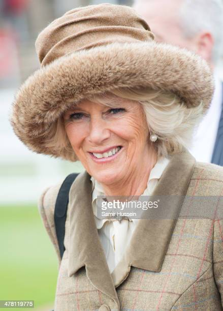 Camilla Duchess of Cornwall attends Ladies Day on day 2 of The Cheltenham Festival at Cheltenham Racecourse on March 12 2014 in Cheltenham England