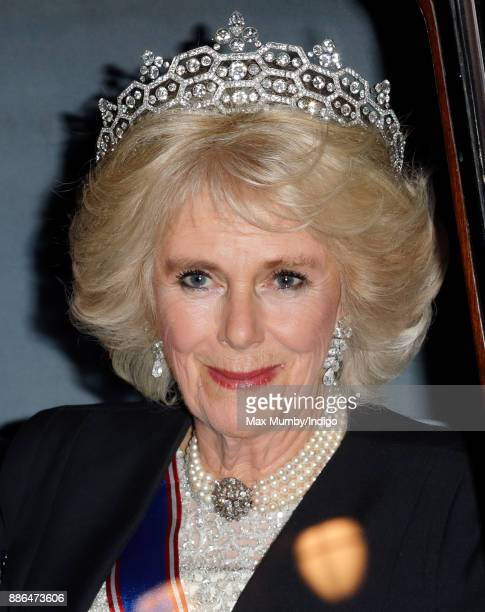 Camilla, Duchess of Cornwall attends the annual Diplomatic Reception at Buckingham Palace on December 5, 2017 in London, England.