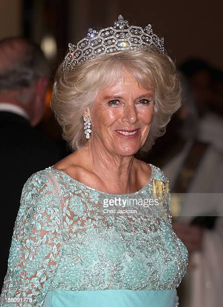 Camilla, Duchess of Cornwall attends the CHOGM Dinner at the Cinnamon Lakeside Hotel during the Commonwealth Heads of Government 2013 Opening...