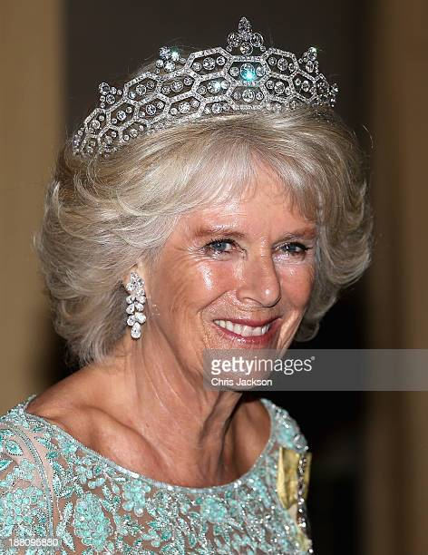 Camilla Duchess of Cornwall attends the CHOGM Dinner at the Cinnamon Lakeside Hotel during the Commonwealth Heads of Government 2013 Opening Ceremony...