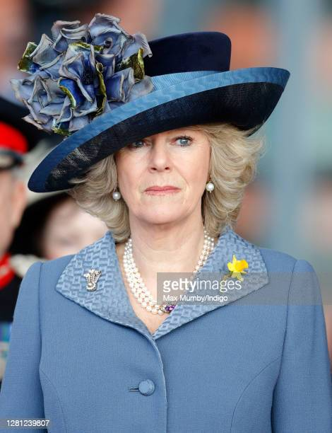 Camilla, Duchess of Cornwall attends the official opening of the new National Assembly for Wales Building , home of the Welsh Parliament on March 1,...