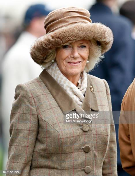 Camilla, Duchess of Cornwall attends The Prince's Countryside Fund Raceday at Ascot Racecourse on November 23, 2018 in Ascot, England.