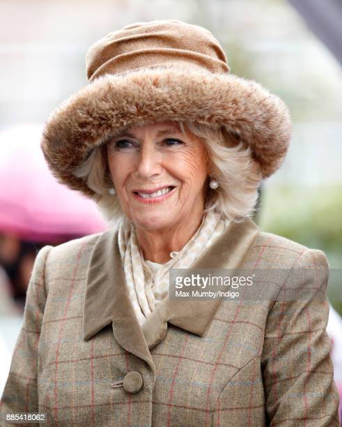 Camilla Duchess of Cornwall attends The Prince's Countryside Fund Raceday at Ascot Racecourse on November 24 2017 in Ascot England