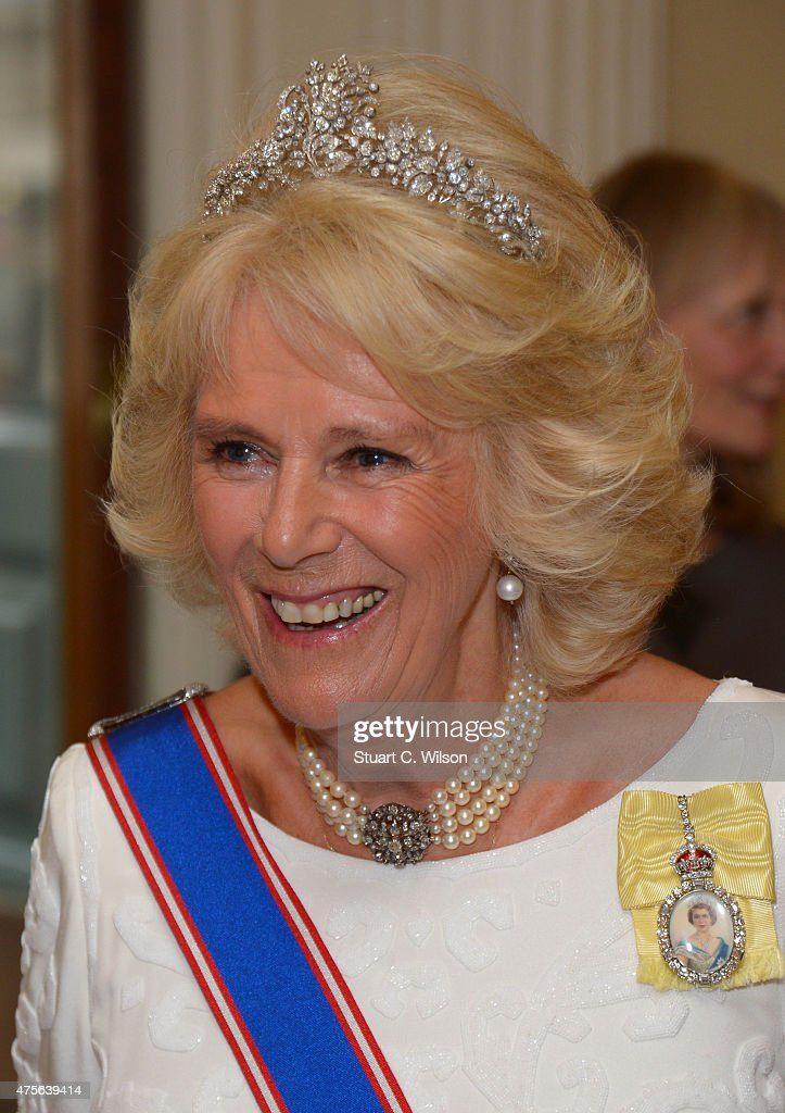 The Duchess Of Cornwall Attends The Royal Academy Of Arts Annual Dinner : News Photo