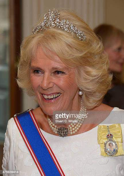 Camilla Duchess Of Cornwall attends the Royal Academy Annual Dinner to celebrate the Summer Exhibition opening to the public on 8 June at Royal...