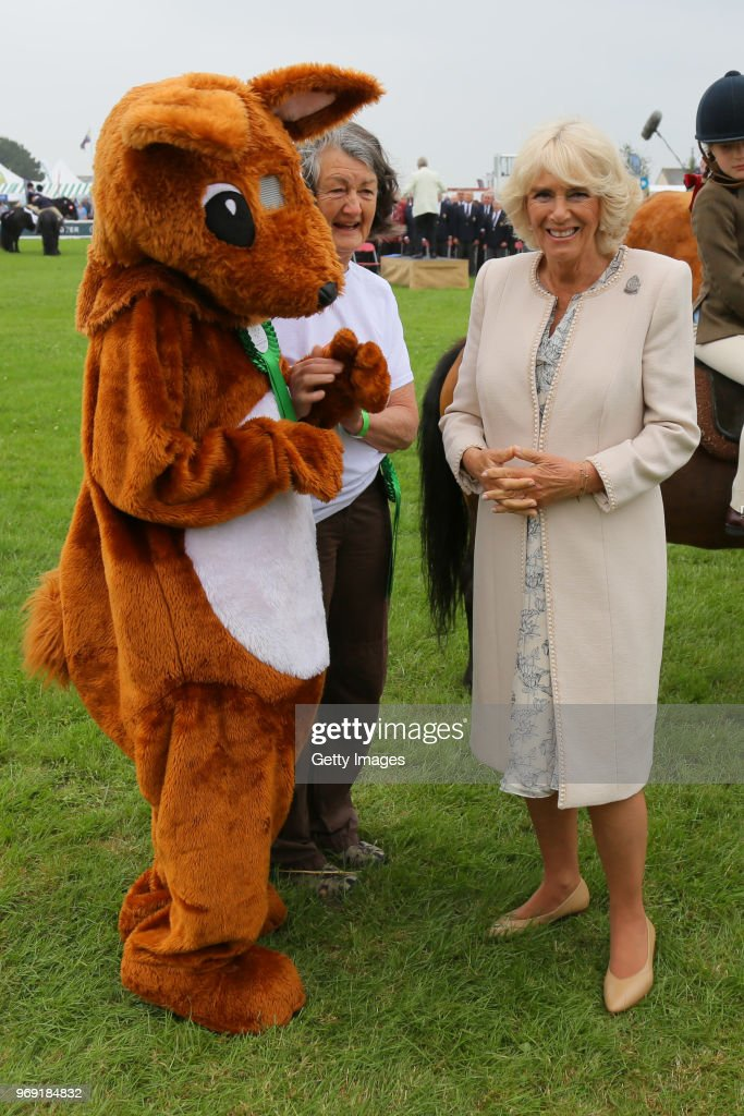 Camilla, Duchess of Cornwall (Vice-President, of the Royal Cornwall Agricultural Association) attends The Royal Cornwall Show at The Royal Cornwall Showground on June 7, 2018 in Wadebridge, England.