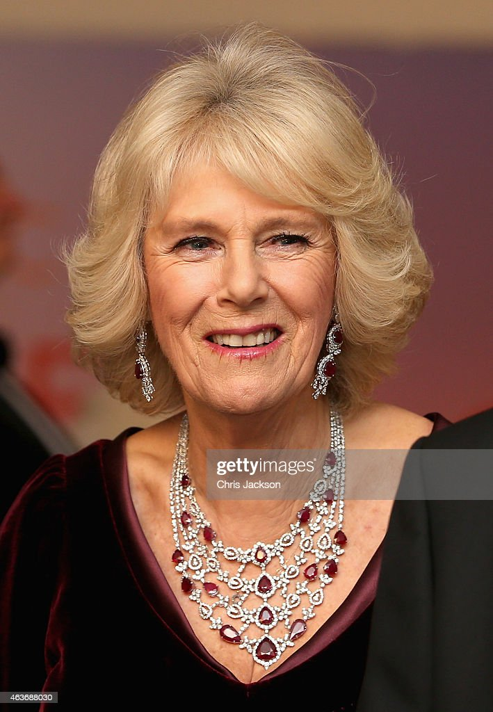 "The Royal Film Performance: ""The Second Best Exotic Marigold Hotel"" - World Premiere - Red Carpet Arrivals : News Photo"