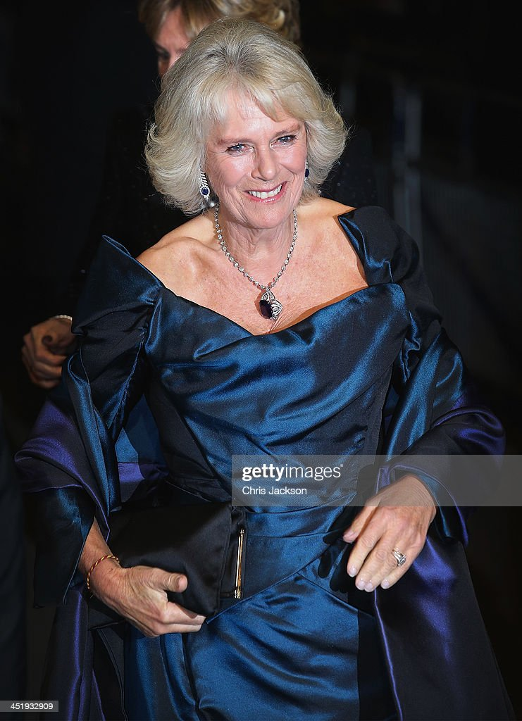 Camilla, Duchess of Cornwall attends the Royal Variety Performance at London Palladium on November 25, 2013 in London, England.